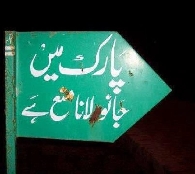 Hilarious Urdu Signs - The Desi Wonder Woman