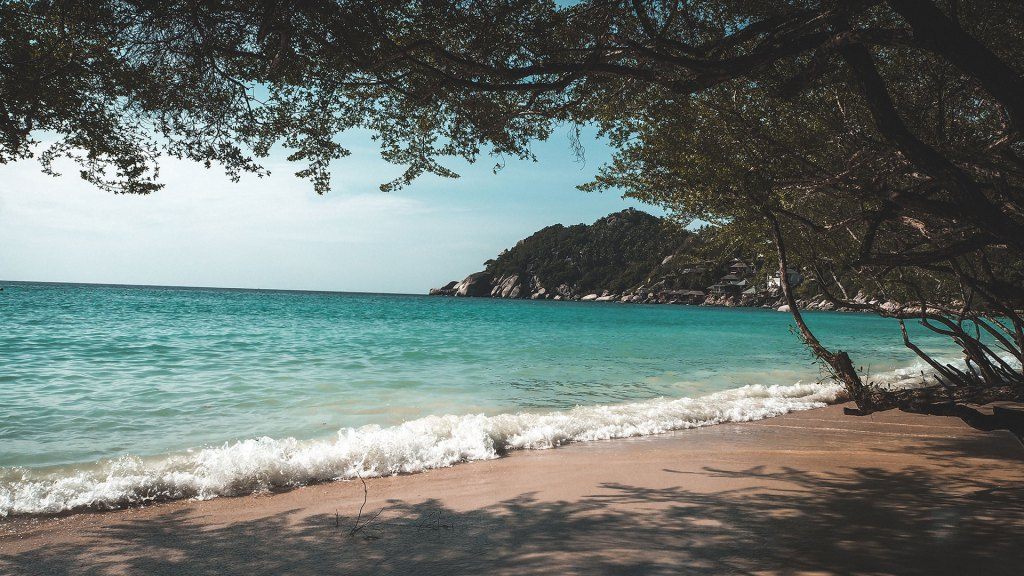 4 Things To Do In Koh Tao