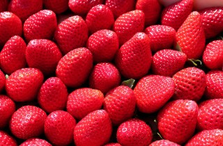 a big pile of strawberries