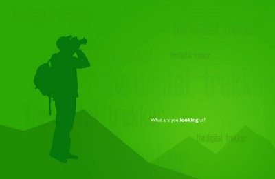FreeBee Wallpaper-What are you looking at?