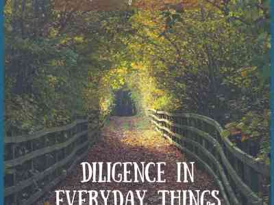 Diligence in Everyday Things