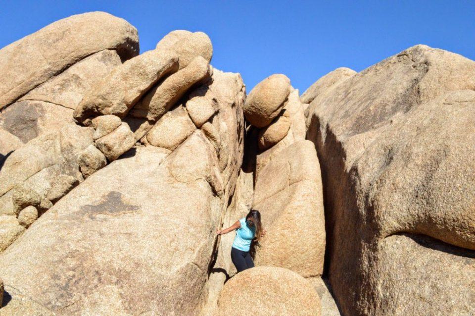 joshua-tree-stuck-split-rock