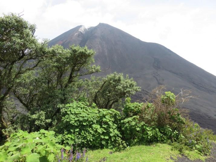 Pacaya Volcano, Guatemala