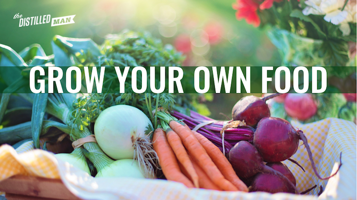 How To Grow Your Own Food In A Backyard Garden The Distilled Man