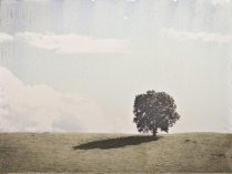 Grainger County Lone Tree, mixed media image transfer on panel, 6 x 8 inches