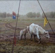 white cows with yellow flag