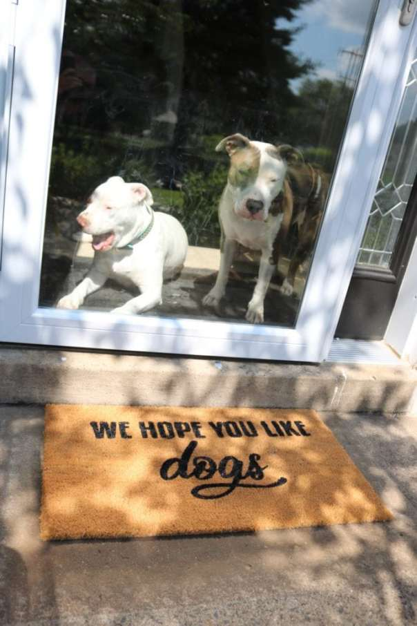 we hope you like dogs welcome mat
