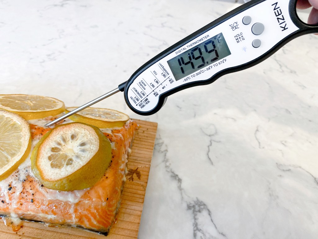 meat thermometer in salmon