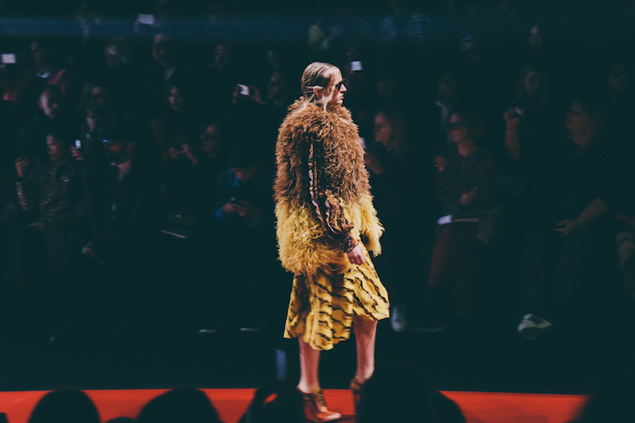 Just Cavalli Fall Winter 2015 2016 Milan Fashion Week-9