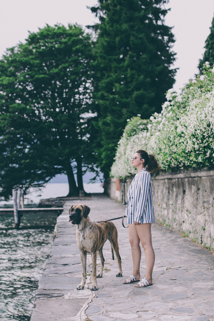 lake orta anja tufina fuji the great dane