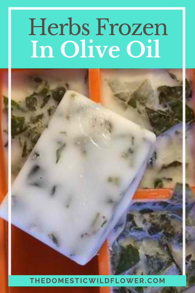 Herbs Frozen in Olive Oil: A Fast and Easy Method of Preservation