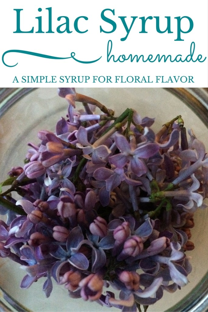 Lilac Syrup: A Simple Syrup For Floral Flavor | A Domestic Wildflower click to read how to make homemade lilac syrup. Use it in tea, cocktails, cake frosting, and more! Such a simple tutorial!