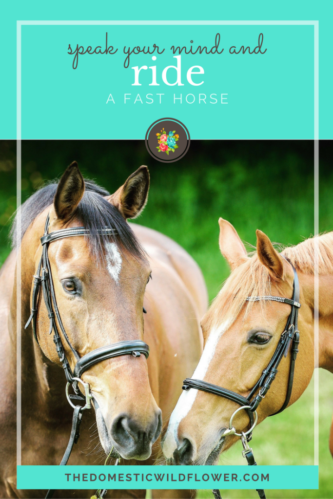 Speak your mind and ride a fast horse * 19 Inspirational Quotes for Country Girls | The Domestic Wildflower click through to read this awesome post! These encouraging and inspirational quotes explain what it means to have the heart of a country girl.