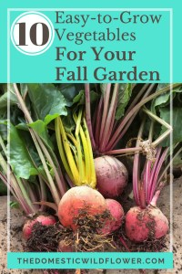Ten Easy to Grow Vegetables for your Fall Garden