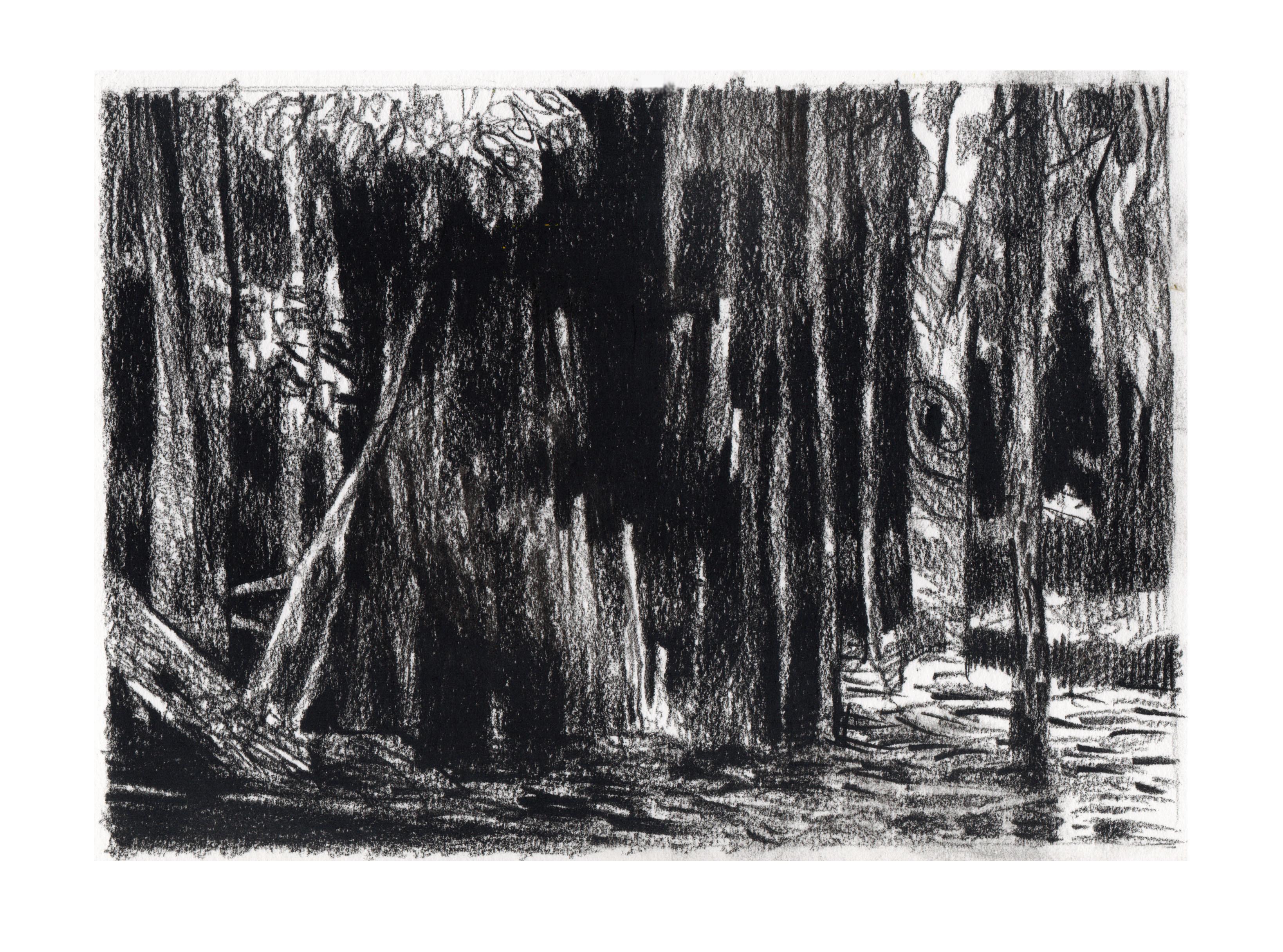 18. Ben Crappsley, Dark Woods II, $240