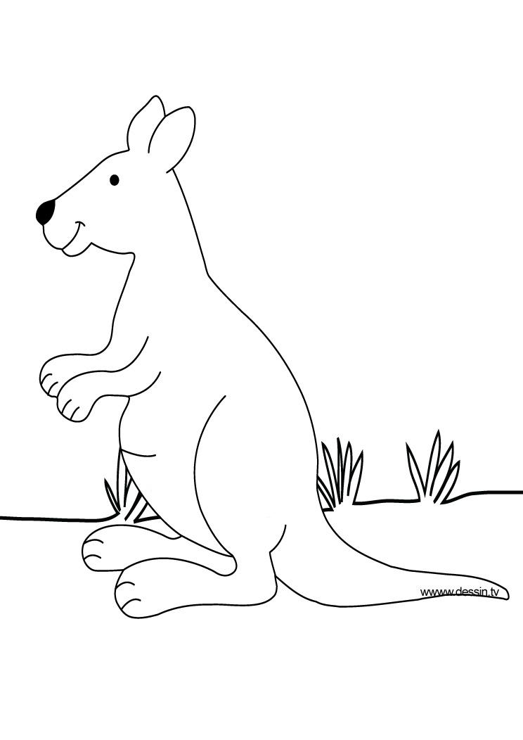 coloring kangaroo