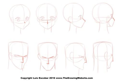 Cartoon Nose FormulasThe Drawing Website | The Drawing Website