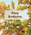 Happy Thanksgiving | Dreamery Events