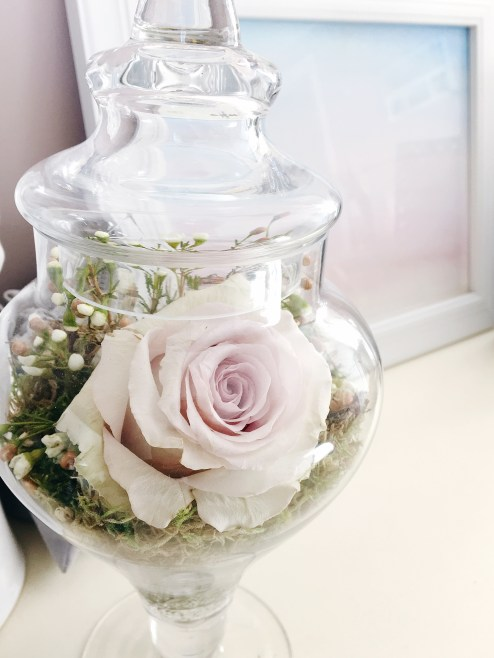 Monthly Reflections   March    Dreamery Events