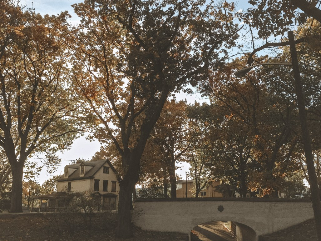 Autumn Scenes & the Launch of My Society6 Seasons Collection | Dreamery Events