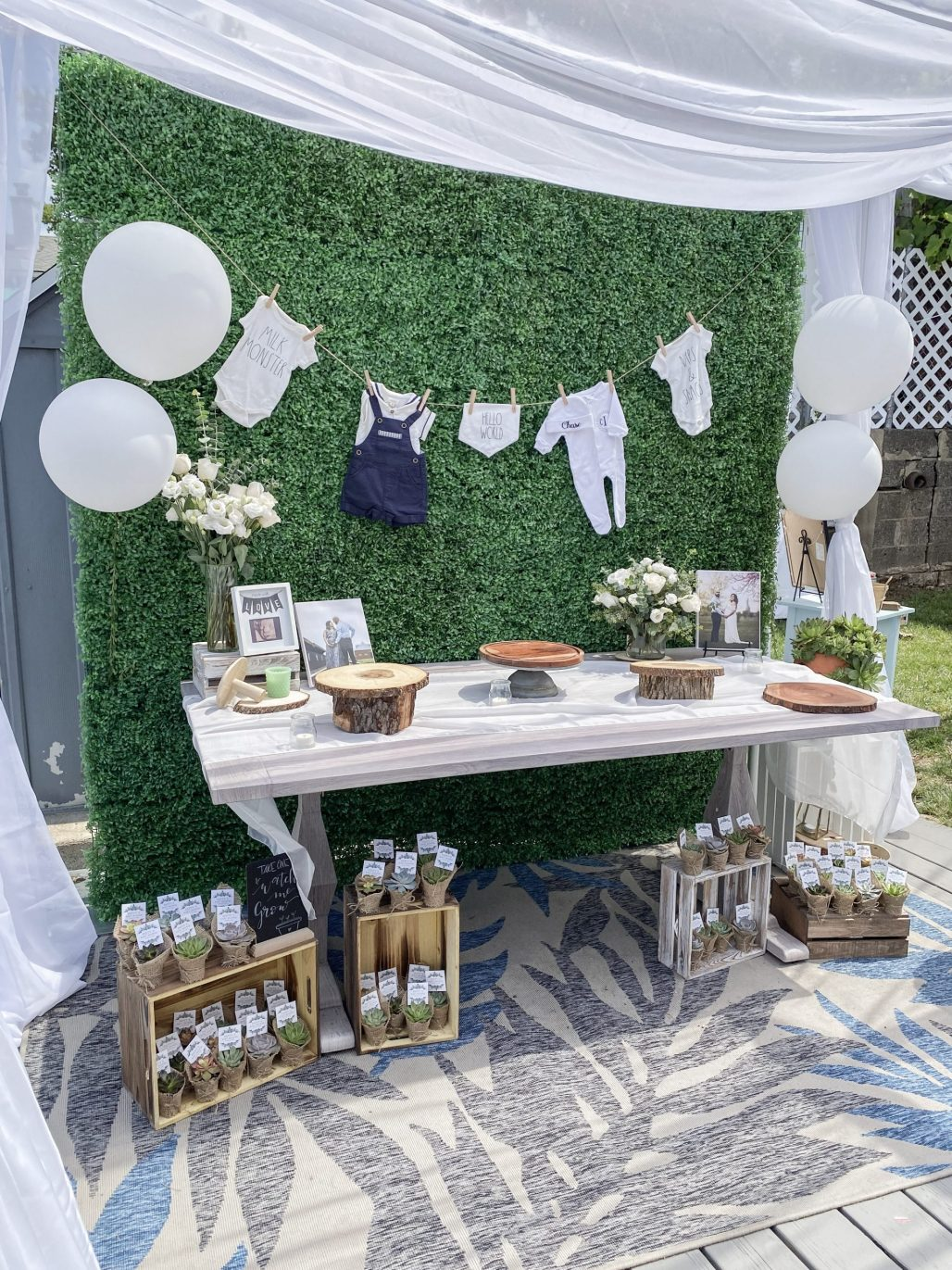 Outside Baby Shower : outside, shower, Rescheduled, Shower, Becomes, Calming, Outdoor, Affair, Party, During, Covid-19…, Dreamery, Events