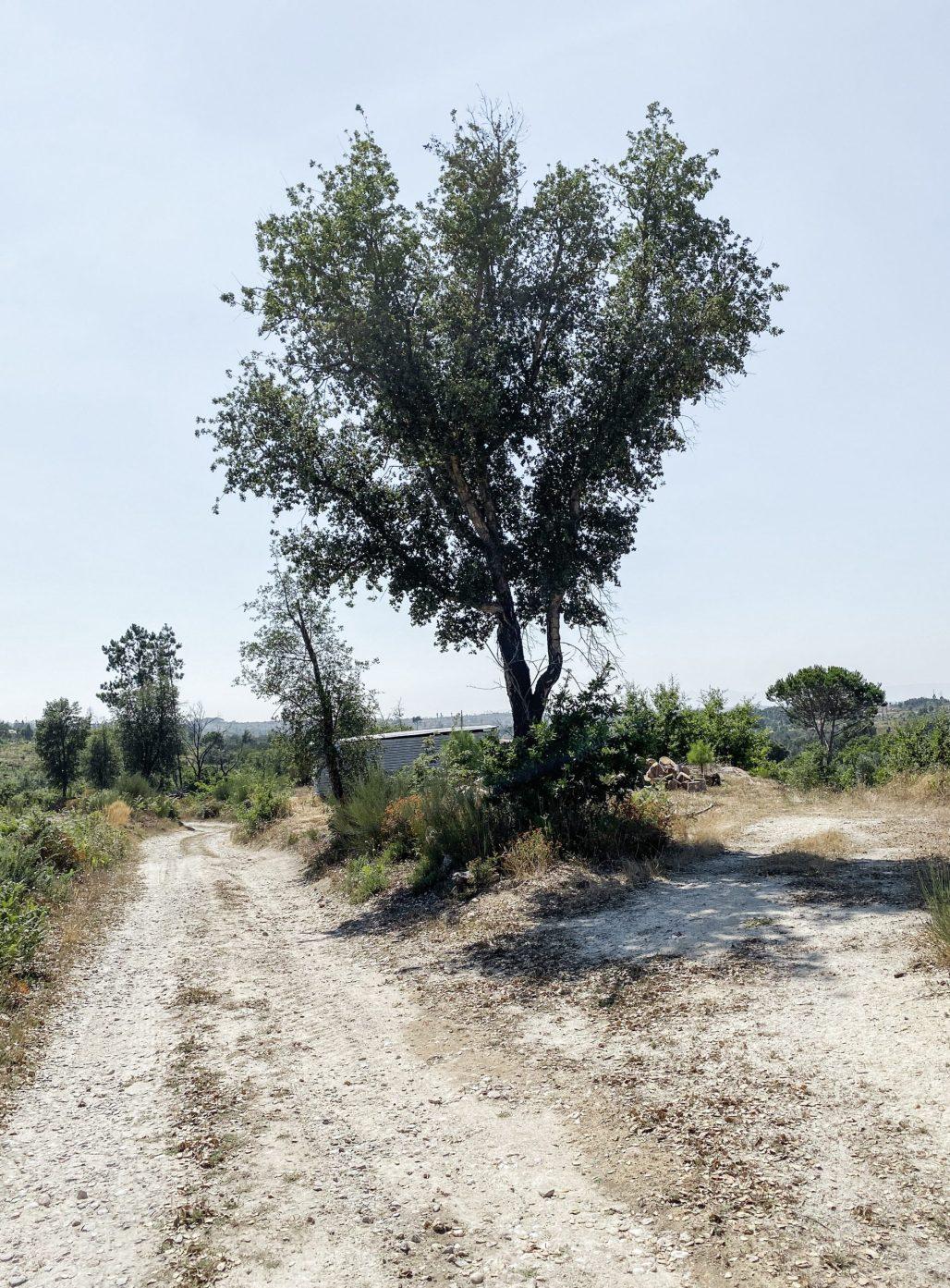 Traveling to ... Serra da Estrela Living Pt. I | Dreamery Treavels