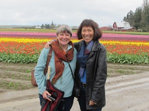 A respite from the rain in the tulip fields.