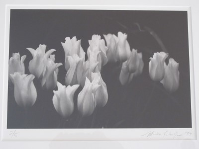 Capturing the 'essence of tulipness' in black and white, Mischa's print hangs in our kitchen today.