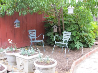 Come sit under the peach tree and invite birds to join us....