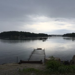 Early morning Sunday: a quiet pond after the rain. Goodbye, Stonington.
