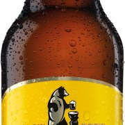 Hofmeister - Helles 24x 330ml Bottles