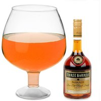 Giant Acrylic Brandy Glass 193.5oz / 5.5ltr (Single)