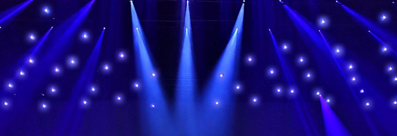 Celine Dion drone Verity