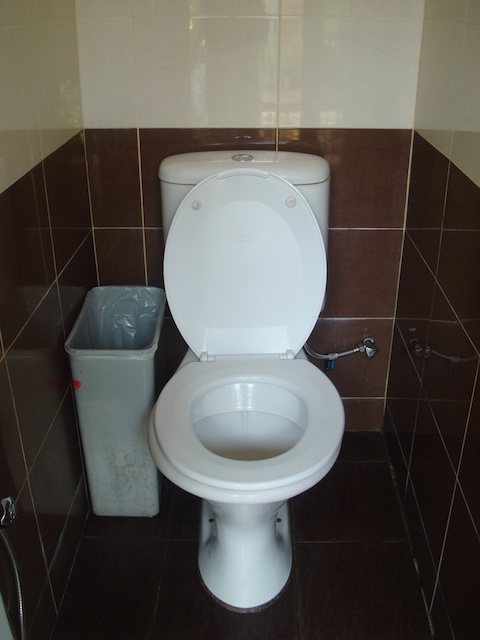 Admirable The Best Toilet In Malaysia The Dropout Diaries Caraccident5 Cool Chair Designs And Ideas Caraccident5Info