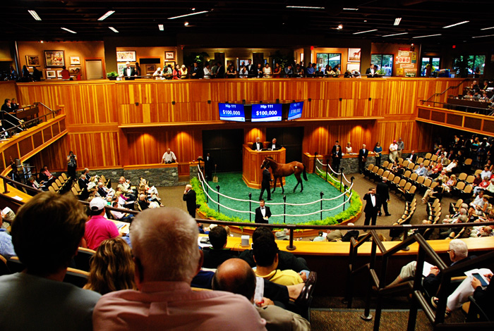 Fave Moments from Fasig Tipton