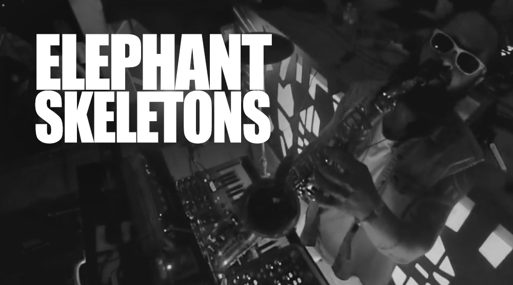 Music Video: Elephant Skeletons 'Back In Time' Live From Evolve