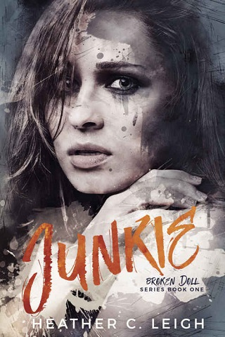 Image result for junkie heather c. leigh