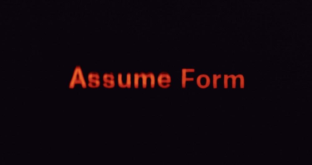 ASSUME FORM