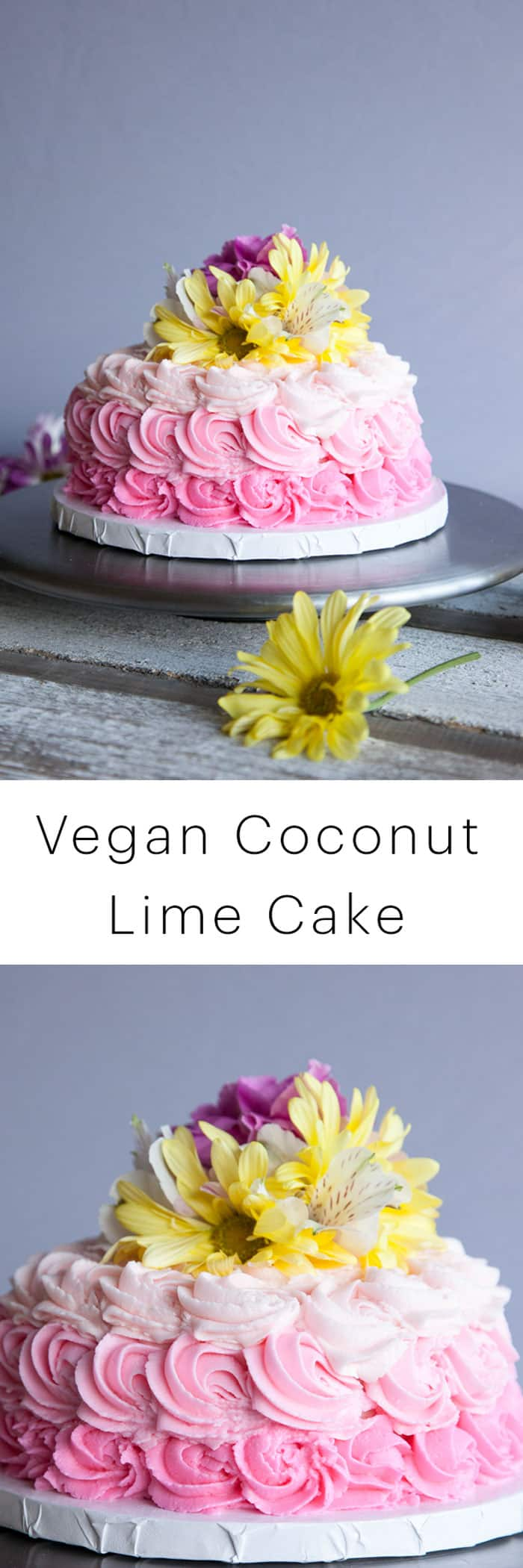 Vegan Dessert Recipe: Decadent Coconut Lime Cake Collab with The Icing Artist