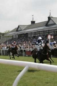 Musselburgh Racecourse - Saltire Raceday @ Musselburgh Racecourse   Musselburgh   Scotland   United Kingdom