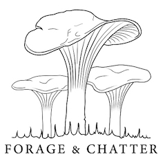 forage-and-chatter-small-copy-1
