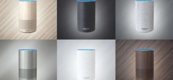 Alexa and Amazon Echo Devices Now Available to Irish Customers