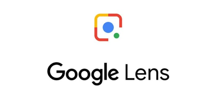 Google Lens adds Flora and Fauna search functionality in Ireland