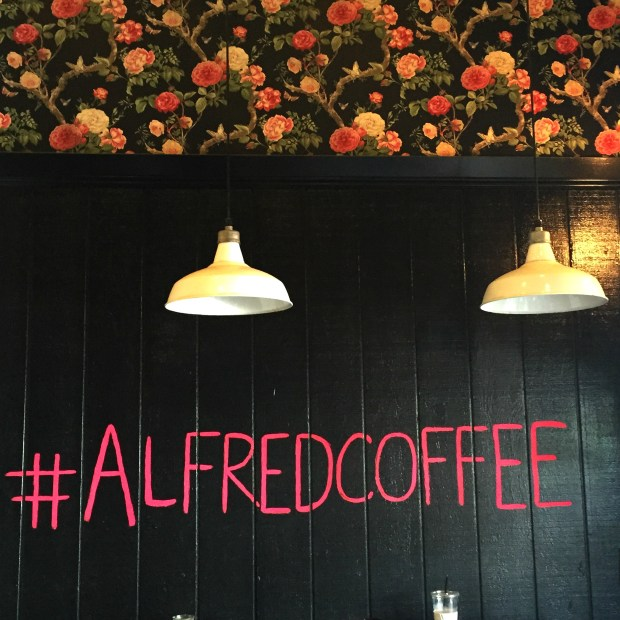 #alfredcoffee