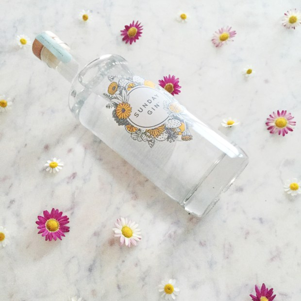 Elderflower Gin Fizz | The ELL Blog