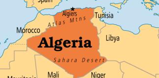 protests in algeria