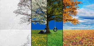 seasons of the journey