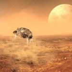 Lander on Mars