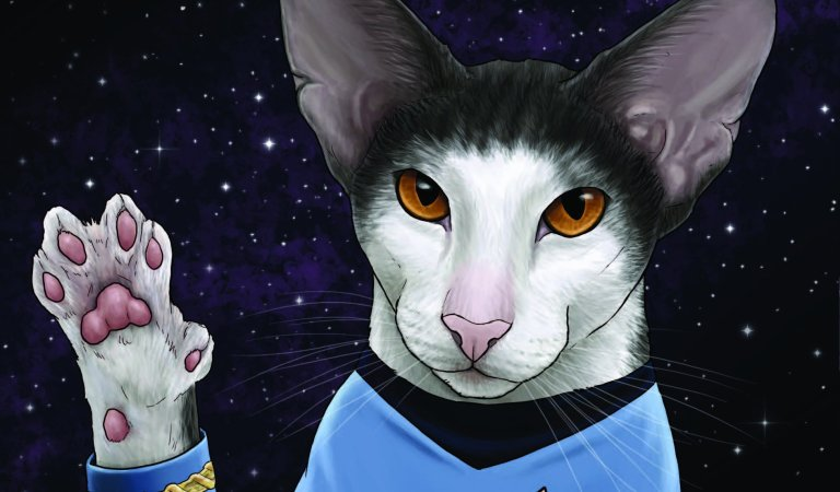 Star Trek and cats come together in Star Trek: Cats