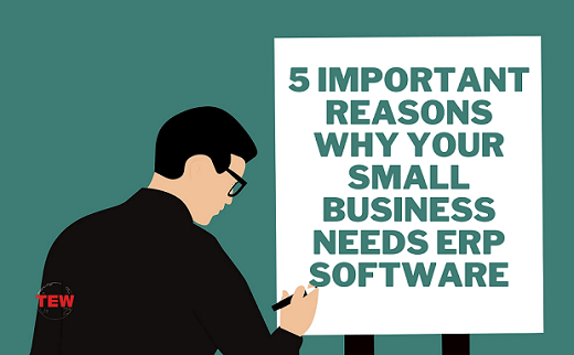 5 Important Reasons Why Your Small Business Needs ERP Software
